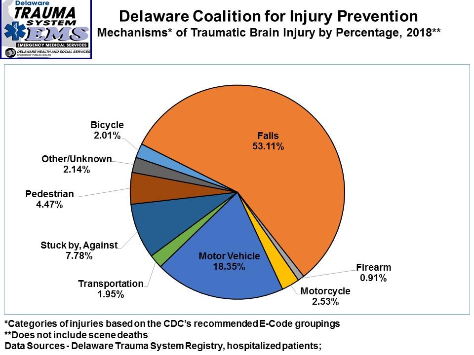 Årsaker til hodeskader i delstaten Delaware